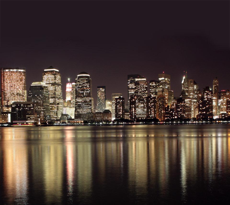 New York Native Plants: New York At Night